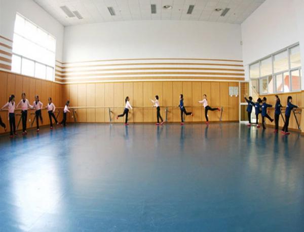 重庆学校舞蹈室PVC地胶